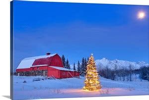 Lit christmas tree in a snow covered field standing in